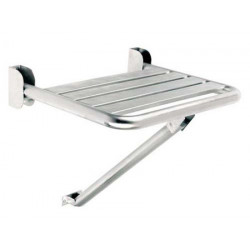 Stainless steel liftable shower seat